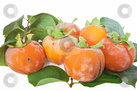 Group of Kaki stock photo, Group ripe persimmons isolated on white background by ANTONIO SCARPI
