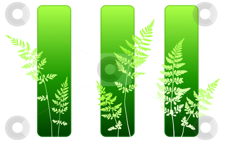 Fern plant green environmental banners stock vector clipart, Fern plant green environmental banners Original vector illustration by L Belomlinsky