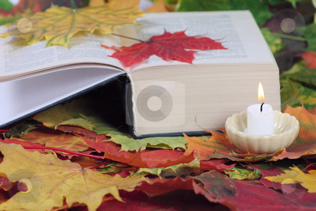 Candle and the book on autumn leaves stock photo, Burning candle and the book on autumn leaves removed close up by Andrey Efremov