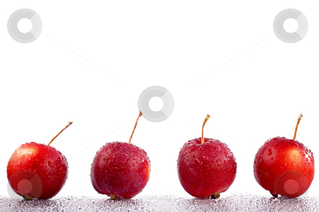 Crab apple stock photo, Crab apples on white background by Barna Tanko