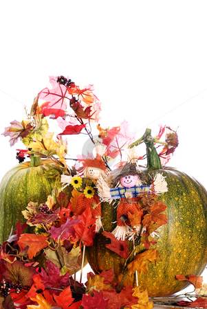 Fall Foliage stock photo, Two ripening pumpkins along with some artificial fall foliage, isolated against a white background by Richard Nelson
