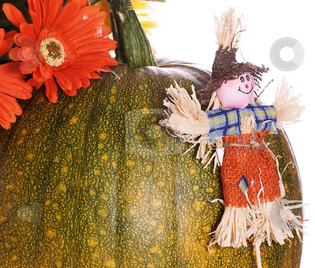 Small Scarecrow stock photo, A small scarecrow leaning against a ripening pumpkin, isolated against a white background by Richard Nelson