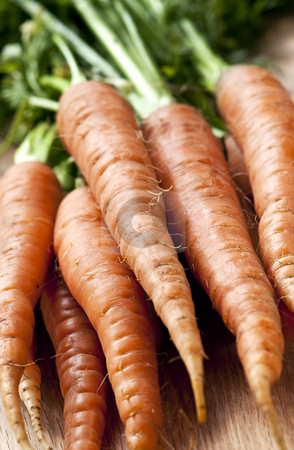 Carrots stock photo, Bunch of whole fresh organic orange carrots by Elena Elisseeva