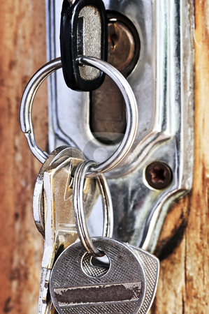 Keys in lock stock photo, Set of keys in lock of old wooden door by Elena Elisseeva