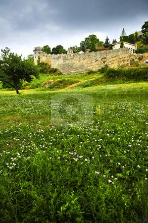 Kalemegdan fortress in Belgrade stock photo, Kalemegdan fortress in Belgrade with field of wildflowers by Elena Elisseeva