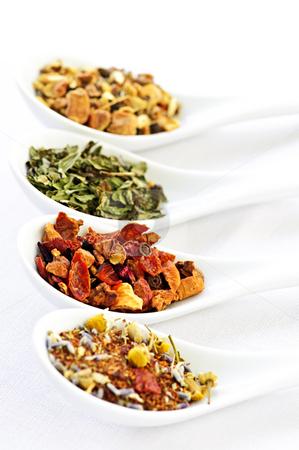 Assorted herbal wellness dry tea in spoons stock photo, Herbal wellness dried tea in four spoons by Elena Elisseeva
