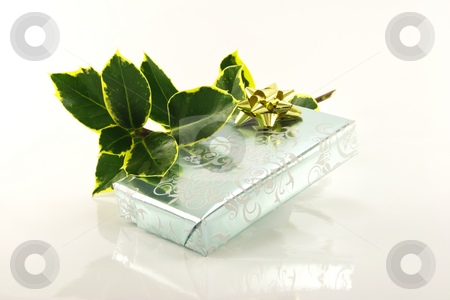 Silver Wrapped Gift and Holly stock photo, Single shiny silver wrapped gift with gold bow and green holly on a reflective white background by Keith Wilson
