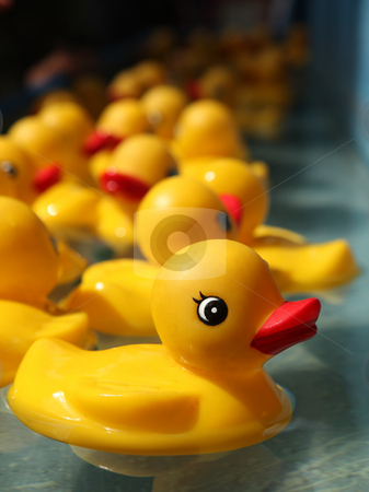 Rubber Duckies Floating in a Carnival Game stock photo, Rubber Duckies Floating in a Carnival Game Outdoors by Katrina Brown