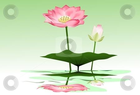 BEautiful lotus stock vector clipart, Beautiful pink lotus by Surya Zaidan