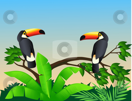 Toucan bird stock vector clipart, Toucan bird in the green tropical forest by Surya Zaidan