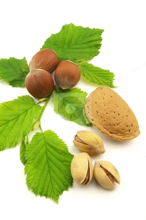 Nuts stock photo, Nuts with leaves by Anton Ignatenco