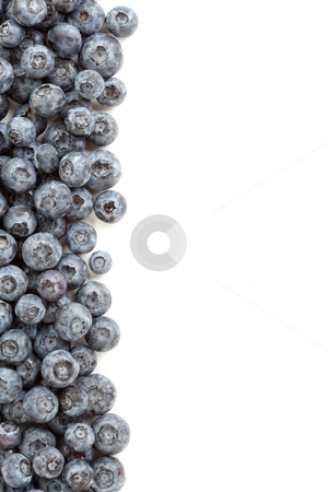 Fresh Blueberries Border stock photo, Fresh Blueberries Border Isolated on a White Background. by Andy Dean