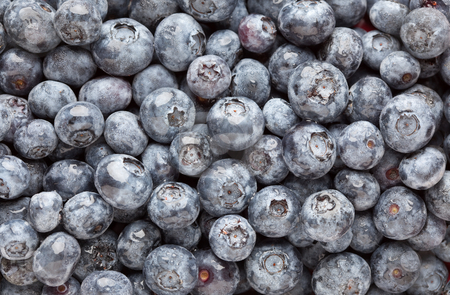 Bunch of Blueberries stock photo, Bunch of Blueberries Background Macro Image. by Andy Dean