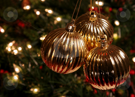 Three Golden Xmas Baubles stock photo, Three Golden Xmas Baubles hanging in front of a tree. by Chris Hill