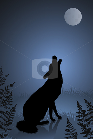 Wild wolf / coyote howling at the full moon stock vector clipart, Wild wolf / coyote howling at the full moon Original vector illustration by L Belomlinsky