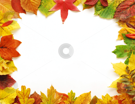 Autumn Leaves Frame stock photo, Autumn frame with warm natural colors on white background. by Tudor Antonel adrian