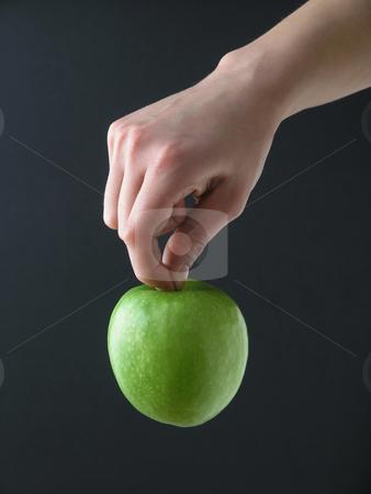 Apple hanging stock photo, Apple hanging in gand by Adam Radosavljevic