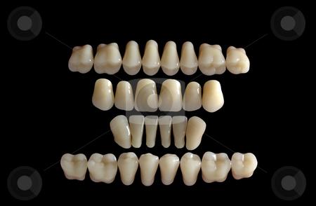 Dents stock photo, Close-up detail of human dents by Adam Radosavljevic