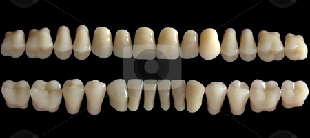 Tooth stock photo, Close-up detail of human dents, Tooth by Adam Radosavljevic