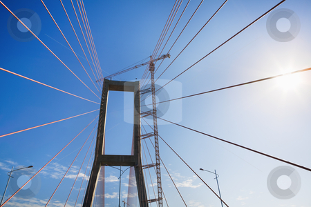 Bridge suspension stock photo, Bridge suspension taken from low angle in the morning sunlight, sky still filled with mist. The new landmark in the city that connecting two island,Suramadu Bridge by Rudyanto Wijaya