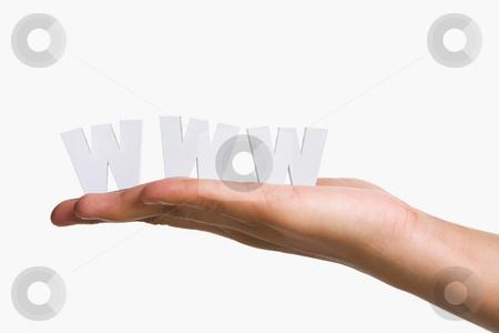 Hand holding WWW stock photo, Hand holding WWW alphabet blocks against white background by Rudyanto Wijaya
