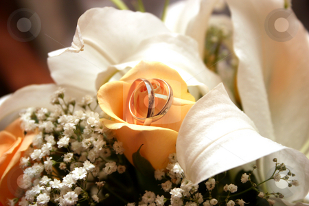 Wedding rings stock photo, Wedding rings by Oleksii Tarakhovskyi