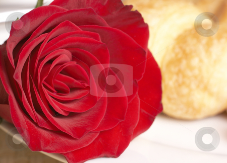 Macro shot of red rose with breakfast stock photo, Macro shot of single red rose on white plate with fresh croissant at the back by Elena Weber (nee Talberg)