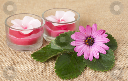 Relaxing spa scene stock photo, Relaxing spa scene with handmade candles, pink daisy flower on mesh material by Elena Weber (nee Talberg)