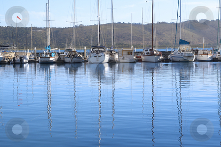 Row of yachts at the harbor stock photo, Row of yachts with reflection in the water at the harbor in Knysna lagoon on a summer day by Elena Weber (nee Talberg)