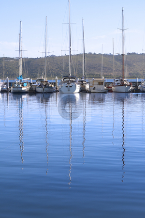 Row of yachts at the harbor stock photo, Row of yachts at the harbor in Knysna with reflection in the water on a summer day by Elena Weber (nee Talberg)