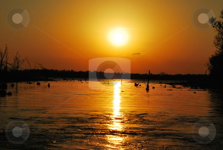 Golden Sunset stock photo,  by Elizabeth Young