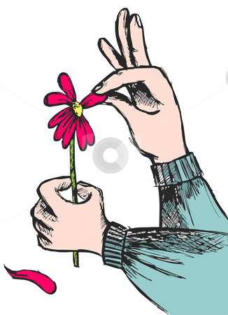 Love question: hands plucking off the petals of a red flower stock vector clipart, Hands plucking off the petals of a red flower on white background. Vector available by Cienpies Design