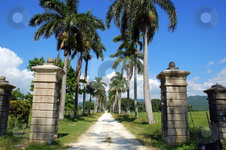 Welcome Home stock photo, Gateway to some farm, in Jamaica by Richard Sheehan