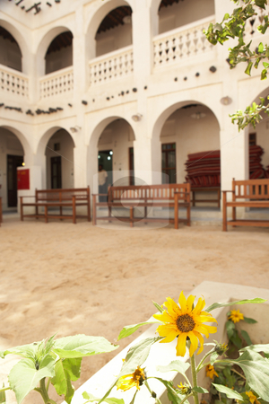 Souq Waqif stock photo, The falconry square at Souq Wakif in Doha, Qatar by Sean Nel