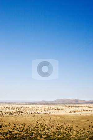 Travel #6 stock photo, Landscape of a dry area in South Africa by Sean Nel
