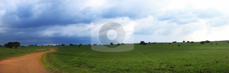Panoramic nature reserve stock photo, Brown dirt road running through a green field with a large storm brewing in the South African Nature reserve of Rietvlei Dam by Sean Nel