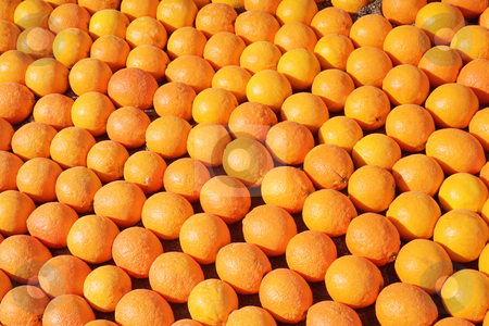 Menton #7 stock photo, Background of oranges. by Sean Nel