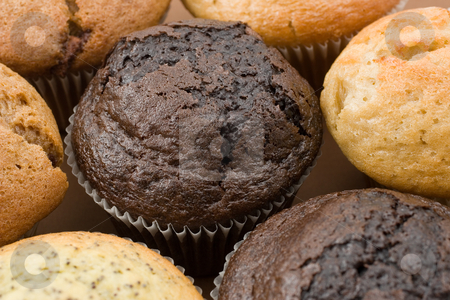 Food #3 stock photo, A Plate of muffins - Chocolate muffin in focus by Sean Nel