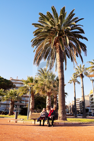 Couple in Antibes stock photo, An elderly couple sitting on a bench in front of a palm tree in Antibes, France. by Sean Nel