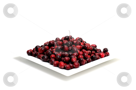 Fresh Cranberry stock photo, Cranberries in various shades of red on a white square plate with a single berry and stem on top, on an isolated background by Lynn Bendickson