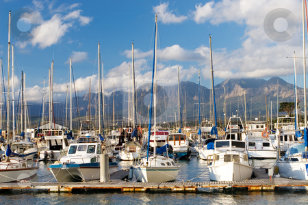 Harbour #17 stock photo, Boats at Knysna Harbour, South Africa by Sean Nel