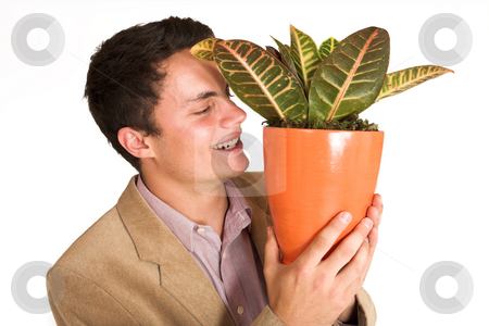 Businessman #128 stock photo, Businessman holding a pot plant by Sean Nel