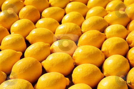 Menton #8 stock photo, Background of lemons. by Sean Nel