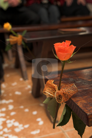 Flower at a wedding reception stock photo, Single flower decorations on the seats at a wedding ceremony  by Sean Nel