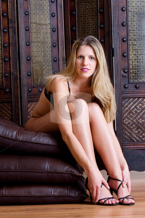 Woman #18a stock photo, Beatiful blonde woman sitting on Leather pillows in Lingerie by Sean Nel