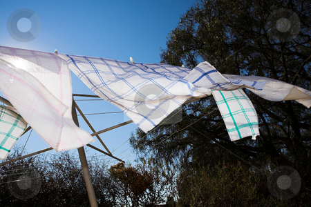 Washing #5 stock photo, Tea towels on the washing line, blowing in the wind  by Sean Nel