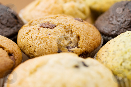 Food #7 stock photo, A Plate of muffins - Caramel muffin in focus - Shallow Depth of Field - Light Foreground by Sean Nel