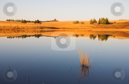Flyfish #33 stock photo, Landscape of a fly fishing lake.  Shallow D.O.F by Sean Nel