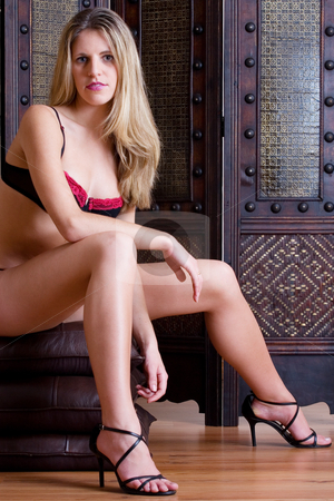 Lingerie #30 stock photo, Beatiful blonde woman sitting on leather pillows wearing black and red lingerie by Sean Nel