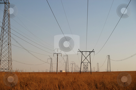 Powercables #3 stock photo, Powerlines running through a national park by Sean Nel